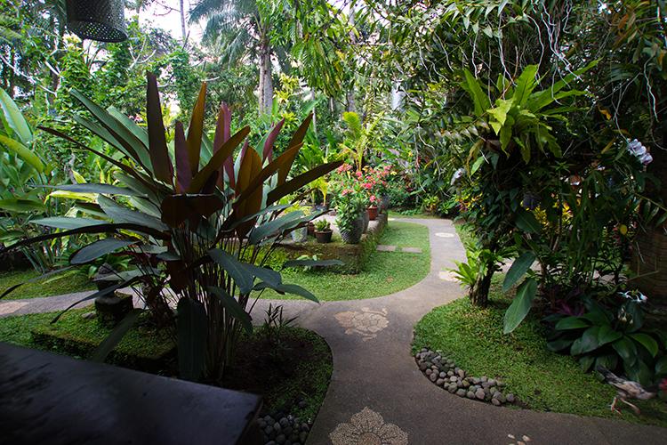 Il meraviglioso giardino di Wet