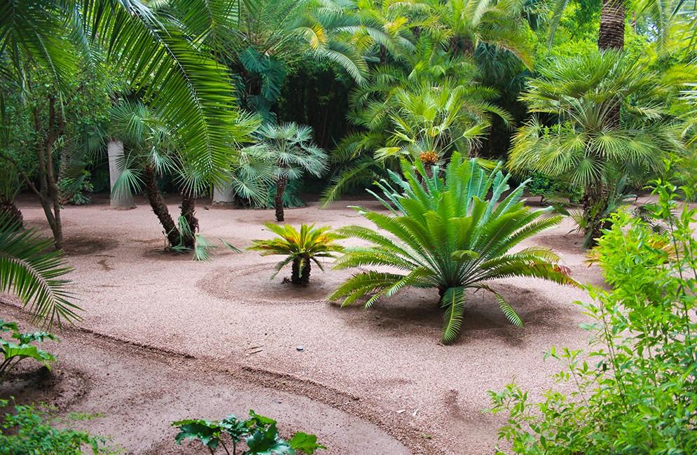 Jardins Majorelle